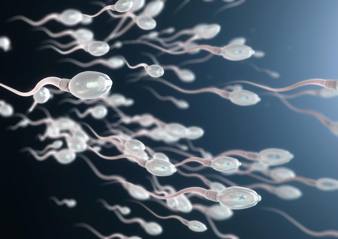 spermicida